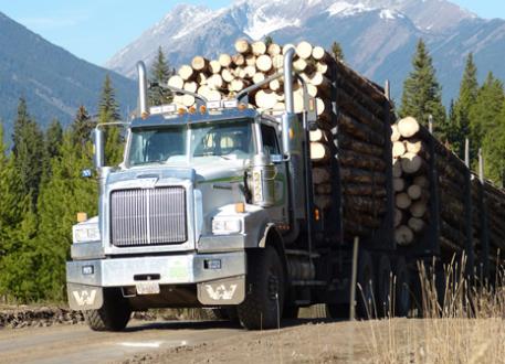 log hauler, logging truck